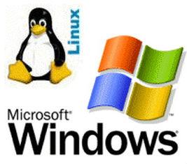 Хостинг глазами Гулливера: Linux или Windows?